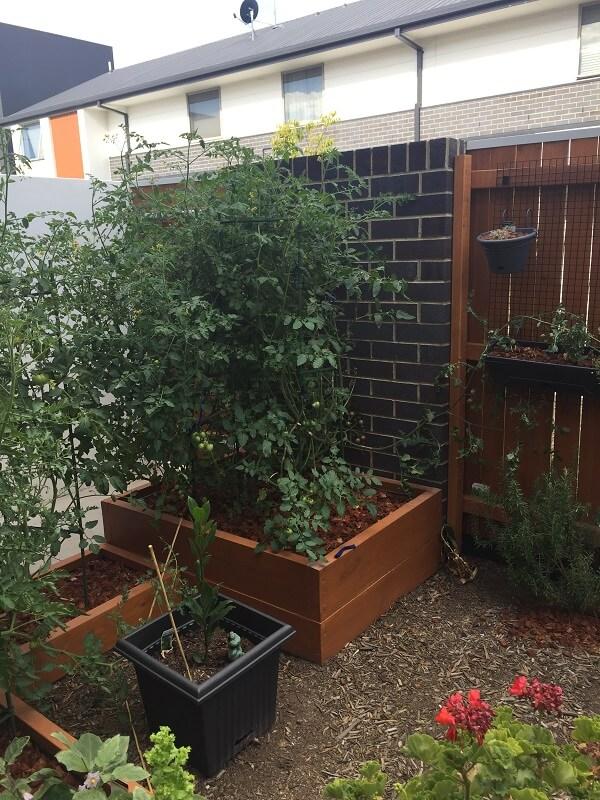 Franco tomato beds