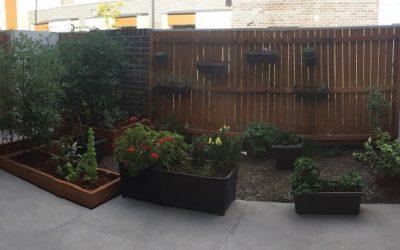 Francos garden
