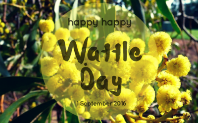 wattle day blog header